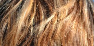 Struktura włosa